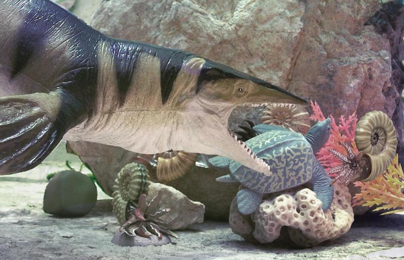 Cretaceous Sea Diorama