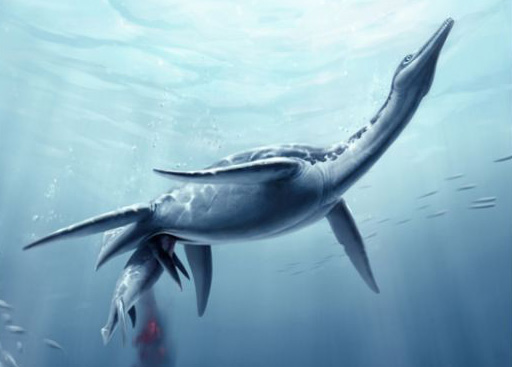 An old debate settled – plesiosaurs gave birth to live young at ...